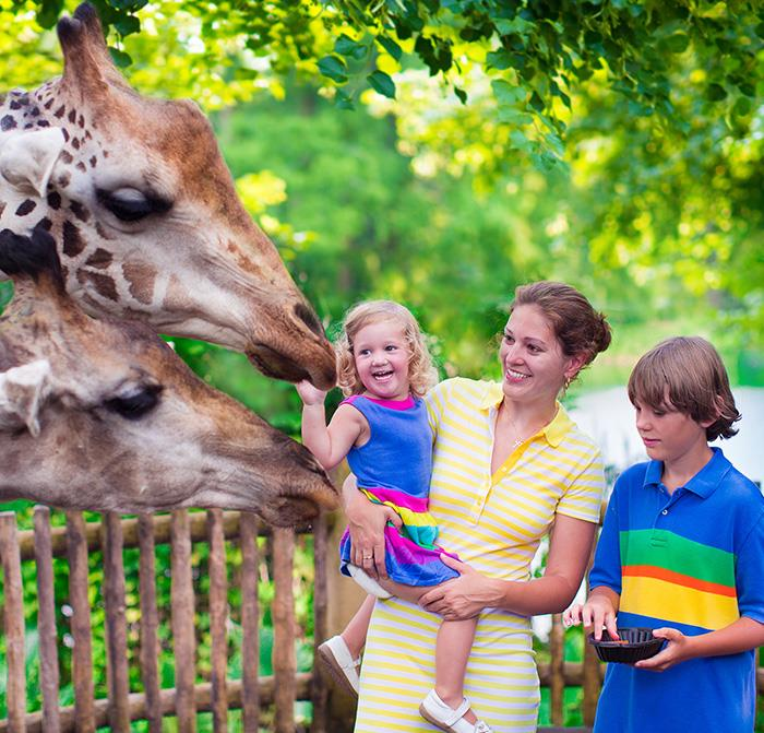 Jacksonville Zoo and Garden Package in Florida Hotel